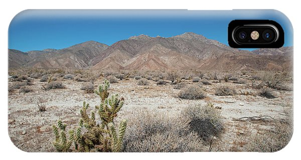 High Desert Cactus IPhone Case