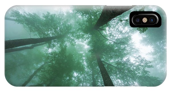 High In The Mist IPhone Case