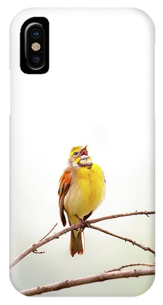 IPhone Case featuring the photograph High Key Dickcissel by Jeff Phillippi