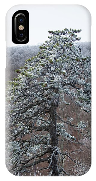 Hoarfrost Gathers IPhone Case