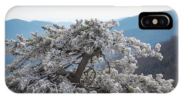 Hoarfrost In The Blue Ridge Mountains IPhone Case