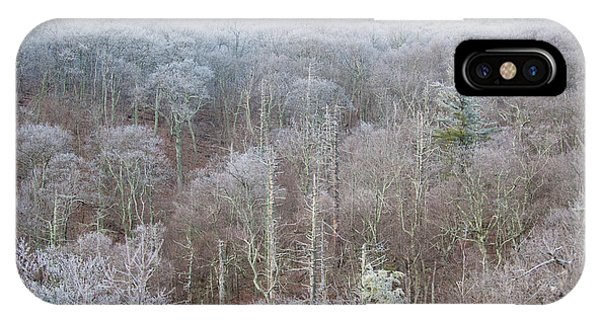 Hoarfrost In The Tree Tops IPhone Case
