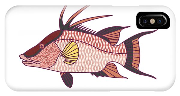 Reef iPhone Case - Hogfish by Kevin Putman