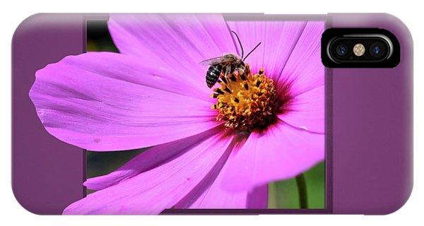 Honey Bee On Pink IPhone Case