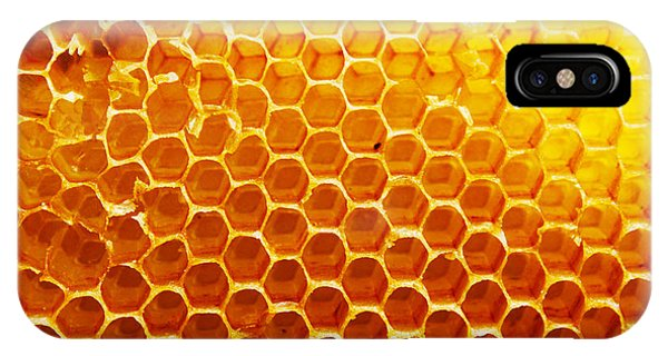Bee iPhone X Case - Honey Beehive by Val Lawless