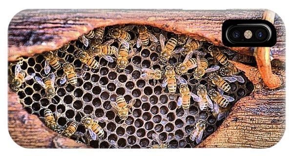 Honey Bees IPhone Case