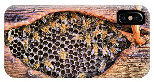 IPhone Case featuring the photograph Honey Bees by JC Findley