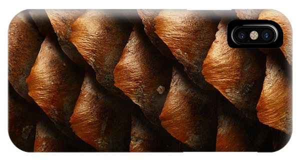 Seeds iPhone Case - Horizontal Full Frame Macro Of A Cone by Chembarisov