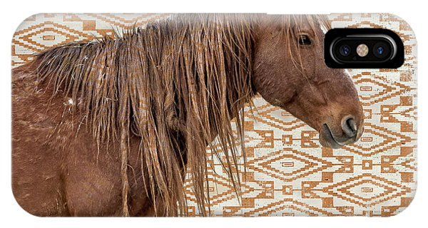 Horse Blanket IPhone Case