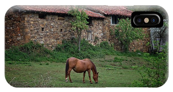 Horse In The Field Next To A Rural House IPhone Case