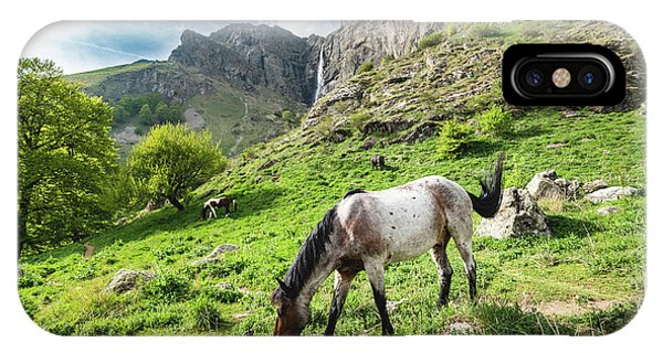 IPhone Case featuring the photograph Horse On Balkan Mountain by Milan Ljubisavljevic