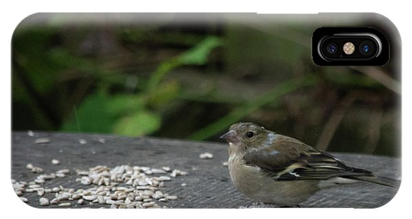 IPhone Case featuring the photograph House Sparrow Next To Seed On Bench by Scott Lyons