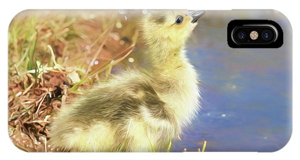 Gosling iPhone Case - How Do I Get Up There by Donna Kennedy