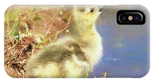 Goslings iPhone Case - How Do I Get Up There by Donna Kennedy