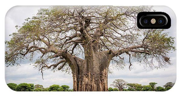 East Africa iPhone Case - Huge Baobab Tree In The Tarangire by Gabor Kovacs Photography