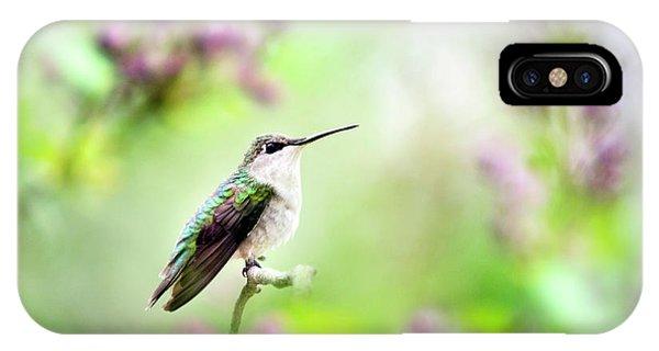 Beautiful Hummingbird iPhone Case - Hummingbird Charm by Christina Rollo