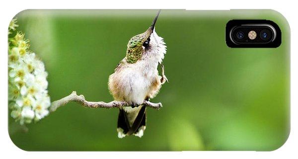 Hummingbird Flexibility IPhone Case