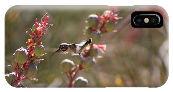 Hummingbird Flying To Red Yucca 1 In 3 IPhone Case