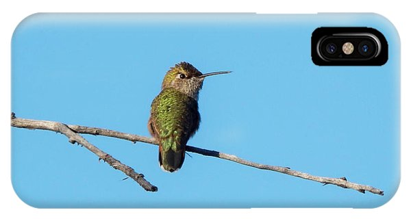 IPhone Case featuring the photograph Hummingbird by Lukas Miller