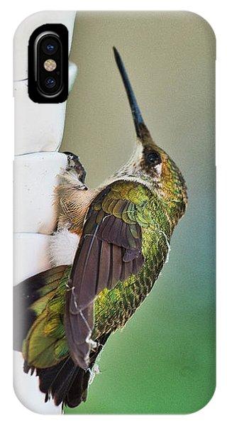 IPhone Case featuring the photograph Hummingbird by Steven Ralser