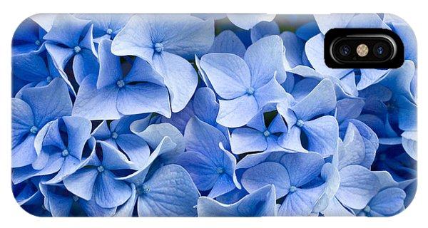 Petals iPhone Case - Hydrangea by Dwph