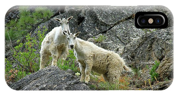 Idaho Mountain Goats IPhone Case