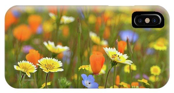 iPhone Case - In A Poppy Dream by Kathy Yates