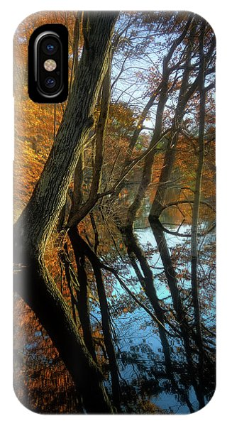 Flooded iPhone Case - In Arcadia by Jerry LoFaro