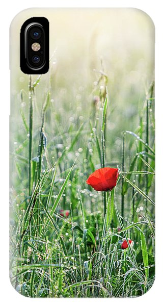 Morning Mist iPhone Case - In The Mist Of The Morning by Evelina Kremsdorf