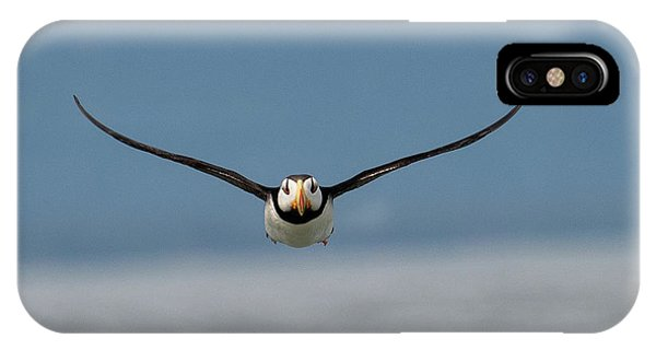 Incoming Puffin IPhone Case