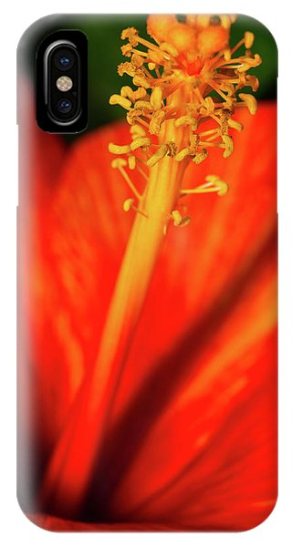 Into A Flower IPhone Case
