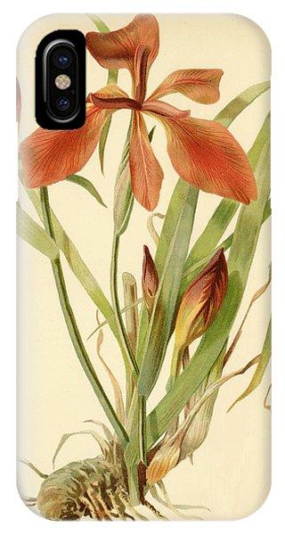Iris Cuprea Copper Iris.  IPhone Case
