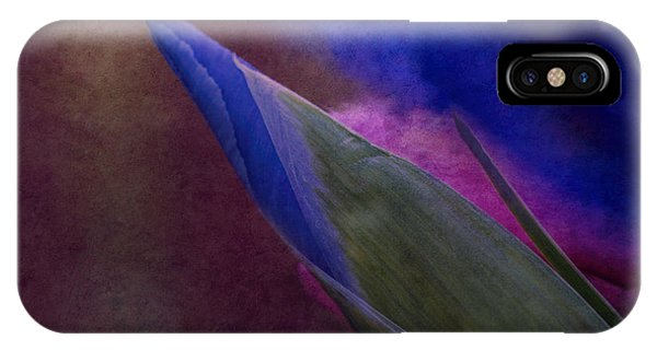 Iris To The Point IPhone Case