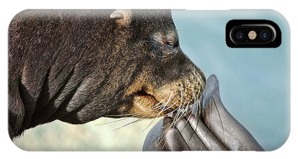 IPhone Case featuring the photograph Itch by Jon Exley