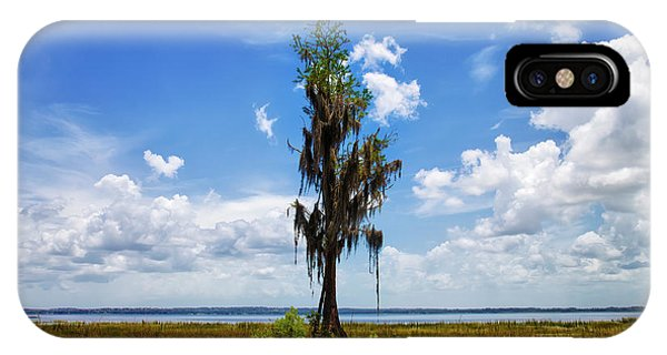 Wakulla iPhone Case - Its Wisdom Surpasses The Forest's by Felix Lai