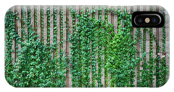 Rockford iPhone Case - Ivy Grooves by Lauri Novak