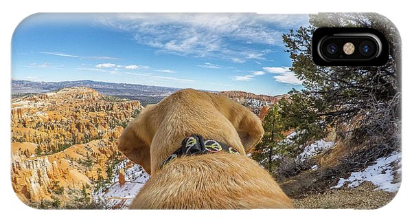 IPhone Case featuring the photograph Jackson At Bryson Canyon by Matthew Irvin