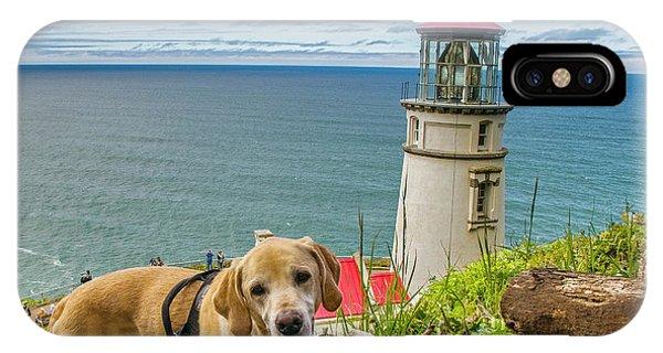 Jackson At Heceta Head Lighthouse IPhone Case