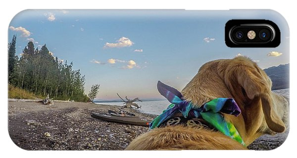 IPhone Case featuring the photograph Jackson Lake By Photo Dog Jackson by Matthew Irvin