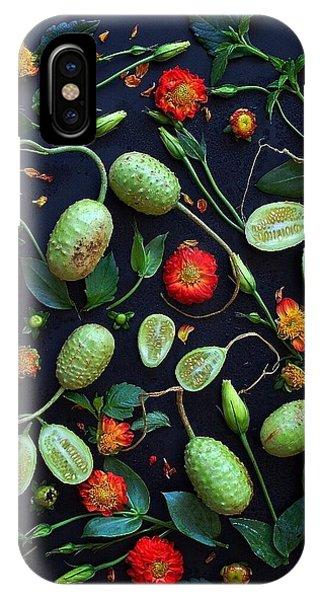 Jamaican Burr Cucumbers IPhone Case