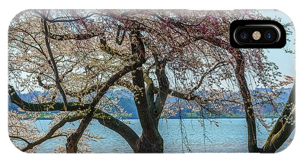 iPhone Case - Japanese Flowering Cherry Trees by Thomas R Fletcher