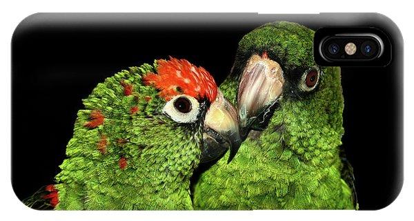 Jardine's Parrots IPhone Case