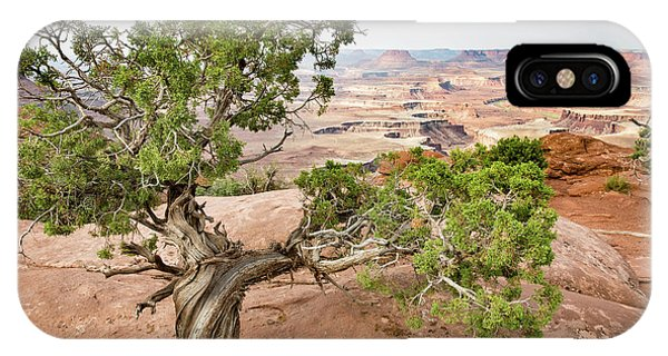 Juniper Over The Canyon IPhone Case