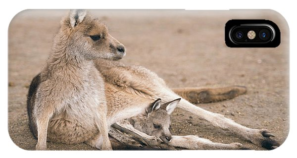 IPhone Case featuring the photograph Kangaroo Outside by Rob D Imagery