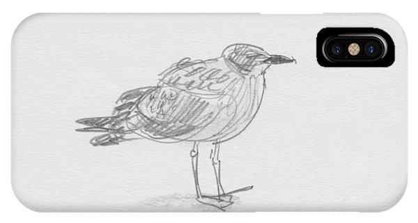 Kelp Gull IPhone Case