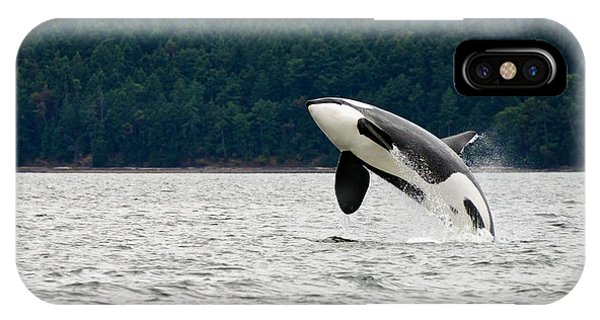Fins iPhone Case - Killer Whale Breaching Near Canadian by Doptis