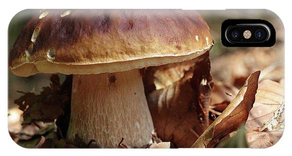 iPhone Case - King Boletus - Edible Mushroom by Michal Boubin