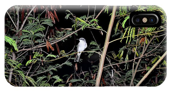 Kingbird At Night IPhone Case