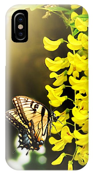Kissed By The Sun IPhone Case