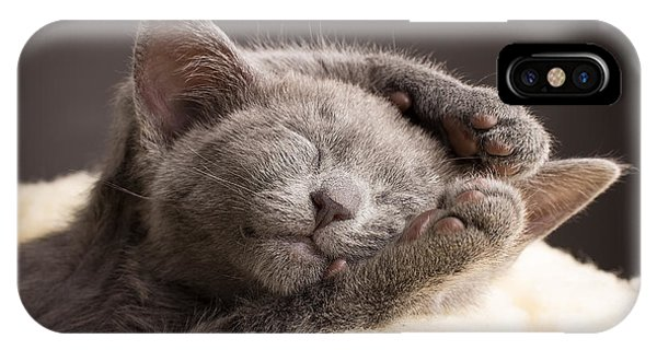 Small iPhone Case - Kitten Sleeping, Russian Blue Cat by Gita Kulinitch Studio
